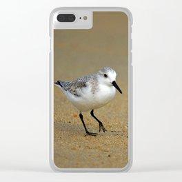 Sanderling Clear iPhone Case