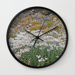 PEARLY EVERLASTING IN AN ALPINE MEADOW Wall Clock