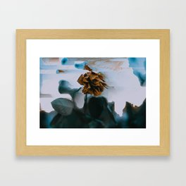 Glitched Rose Color Framed Art Print