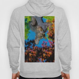 Hairless Sphynx kitten peering into a mirror Hoody