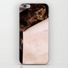 Modeling iPhone & iPod Skin