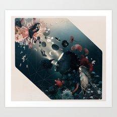 sliva Art Print