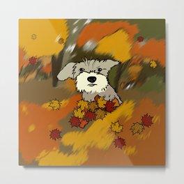 Buck The Schnauzer In Fall Leaves Metal Print