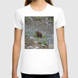 Black bear cub in Jasper National Park   Alberta T-shirt