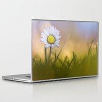 the shining Laptop & iPad Skins featuring Shining Star.... by Bob Daalder