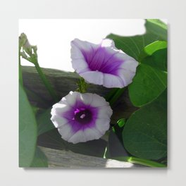 Mother Nature's Garden Metal Print
