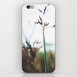 Сommon club-rush iPhone Skin