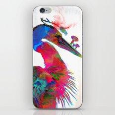 Carae iPhone & iPod Skin