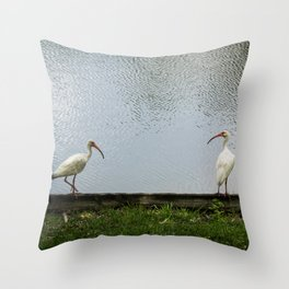 A Lakeside Chat Throw Pillow
