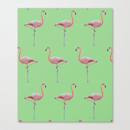 Flamingoing Canvas Print