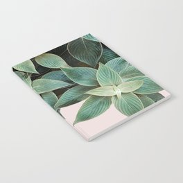 #leaf #wall #pink Notebook