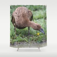 runner Shower Curtains featuring Chocolate Runner by Stecker Photographie