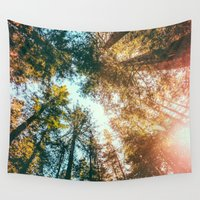 sun Wall Tapestries featuring California Redwoods Sun-rays and Sky by Elena Kulikova