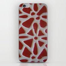 Red Stone Path iPhone & iPod Skin