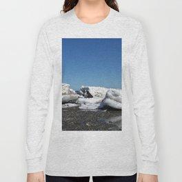 Icebergs and the big Dog Long Sleeve T-shirt