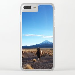 Alpacas in Sajama National Park Clear iPhone Case