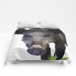 Crazy As A Peach Orchard Boar Vector Comforters