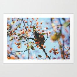 Bird & Berries Art Print