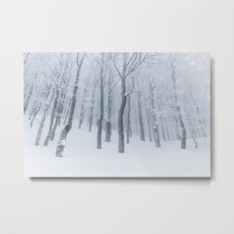 Snow covered frozen forest in winter Metal Print