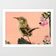brown birdy Art Print