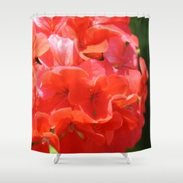 Zonal Geranium Pelargonium hortorum Shower Curtain