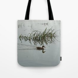 Young Duck swimming in the river Tote Bag