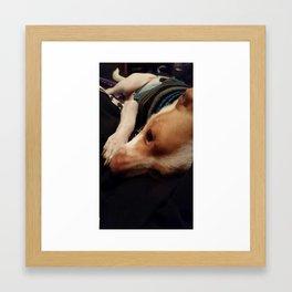 chihuahua heaven Framed Art Print