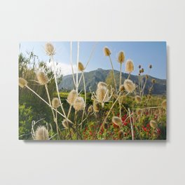 Meadow of Sicilian Spring Metal Print