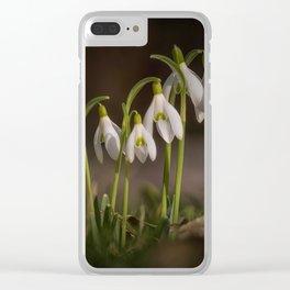Springtime Flowers Clear iPhone Case