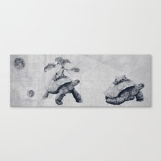 Tortoises - Fate Canvas Print