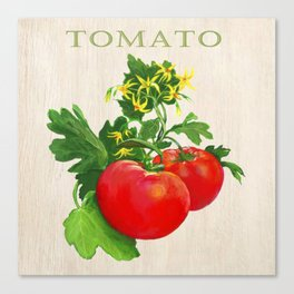 Tomato and its Blossom Canvas Print