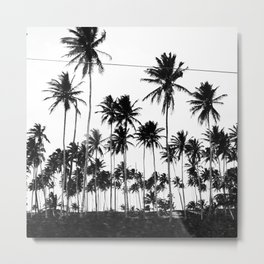 Palms all over Metal Print