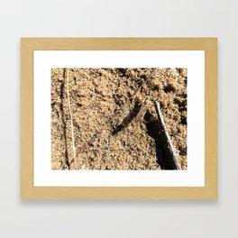 Survival Framed Art Print