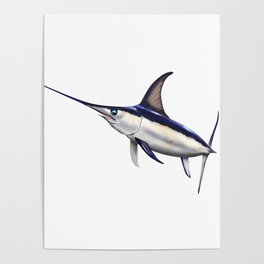 Swordfish Art, Decor and Gifts Poster