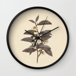 Late Bloom  Wall Clock