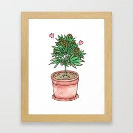 for the love of cannabis Framed Art Print