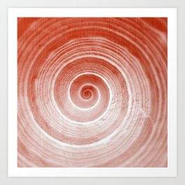 coquillage rouge forme Art Print