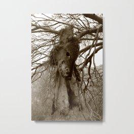 Hanging Metal Print