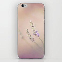 Lavender Dreaming iPhone Skin