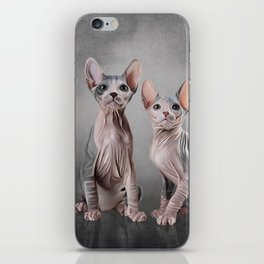 Drawing two cats Sphynx, hairless iPhone Skin