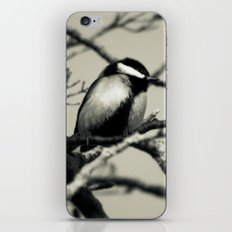 A great view iPhone & iPod Skin