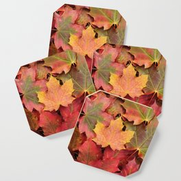 Yellow, green and red maple leaves Coaster