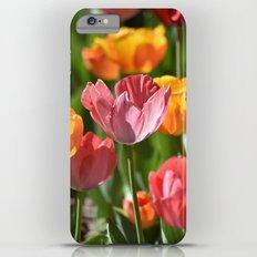 Brilliant Spring iPhone 6 Plus Slim Case