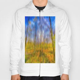 Electric Forest Hoody