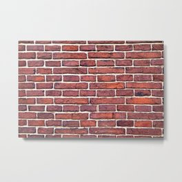 Bricks Metal Print