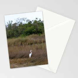 Swamp Song Stationery Cards