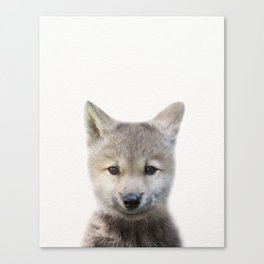 Baby Wolf, Baby Animals Art Print By Synplus Canvas Print