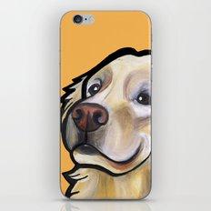 George the golden retriever (orange) iPhone & iPod Skin