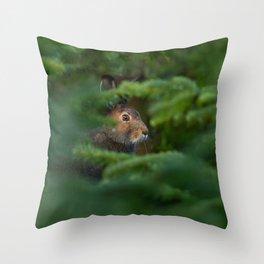 Jackrabbit Throw Pillow