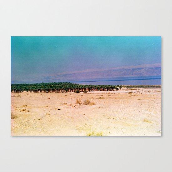 Dreamy Dead Sea III Canvas Print